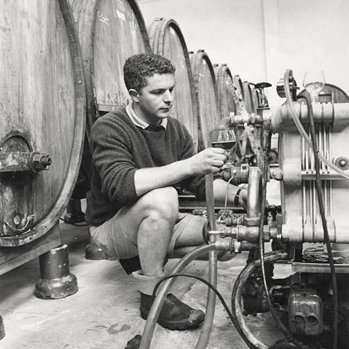 Villa Maria – Niềm tự hào của rượu vang New Zealand - 1