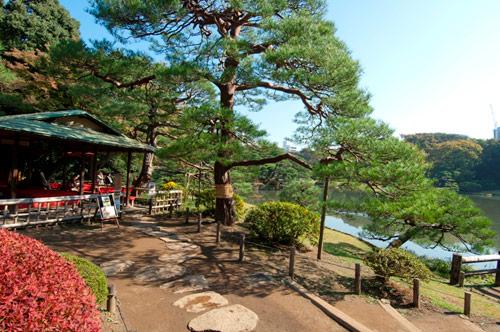 3 điều nhất định phải thưởng ngoạn ở Nhật Bản vào mùa thu - 1