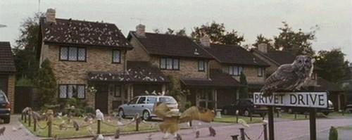 Nhà của phù thuỷ Harry Potter được rao bán 13,6 tỉ đồng - 3