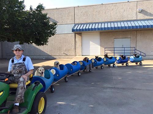 Những chú chó khổ sở vì bị chủ làm khó - 9