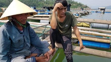 Cá chết ở biển Thanh Hóa: Có lặp lại kịch bản Formosa? - 1