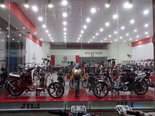 Xe điện made in Việt Nam phủ sóng 200 showroom cả nước - 3