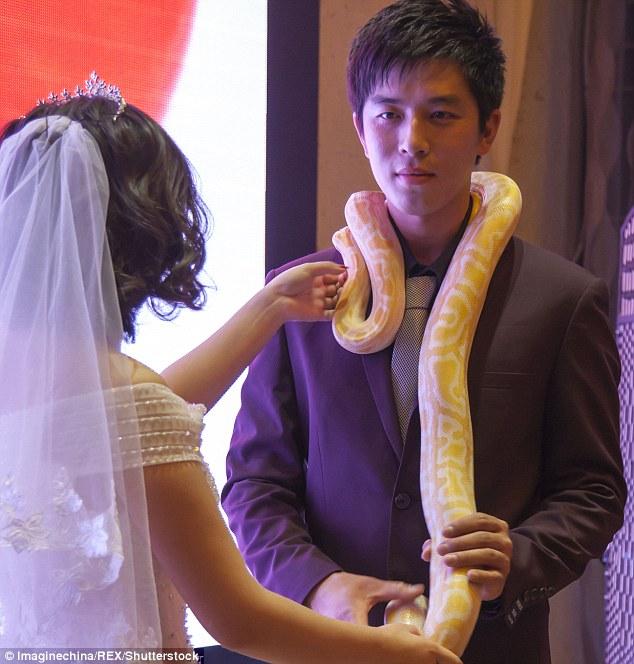 Cặp đôi TQ trao nhau trăn khổng lồ thay nhẫn cưới - 2