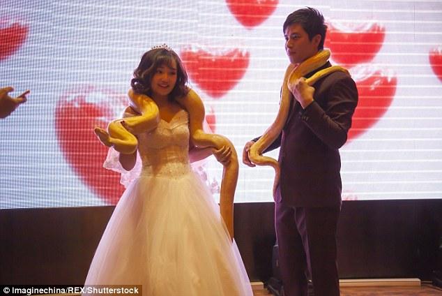 Cặp đôi TQ trao nhau trăn khổng lồ thay nhẫn cưới - 3