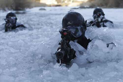 Đội sát thủ HQ mật luyện để ám sát lãnh tụ Triều Tiên - 3