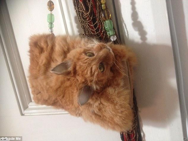 Túi xách bệnh hoạn làm từ... nguyên con mèo chết rao bán 30 triệu đồng - 2