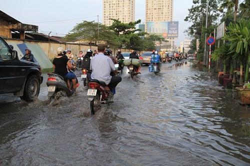 Lựa chọn xe điện nào cho mùa triều cường ở TP. Hồ Chí Minh? - 1