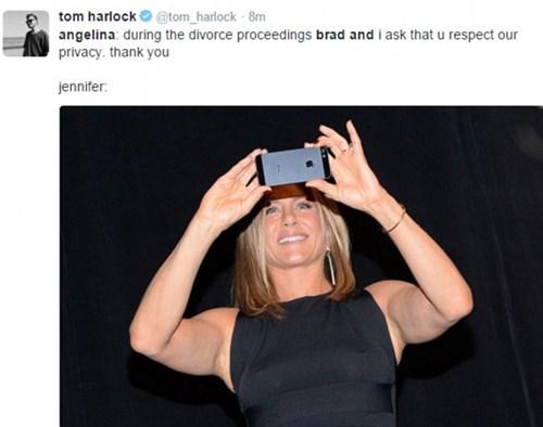 Fan và sao ngỡ ngàng vì Angelina và Brad tan vỡ - 8