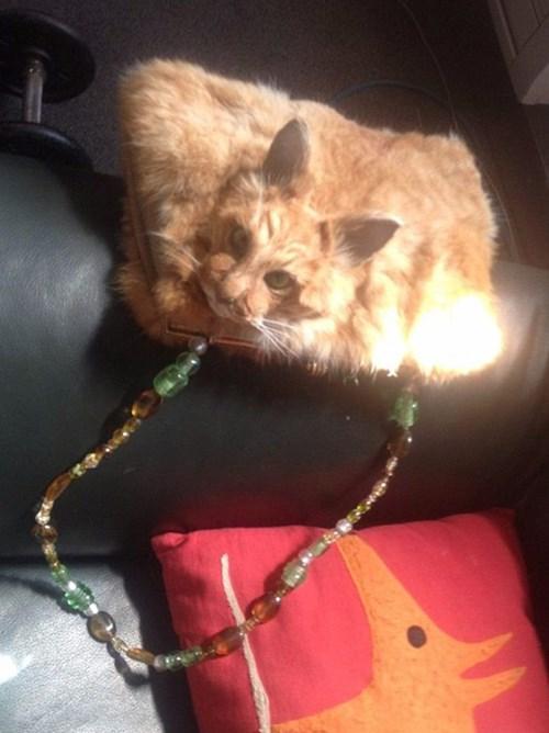 Túi xách 'kinh dị' đính đầu mèo có giá nghìn đô - 2