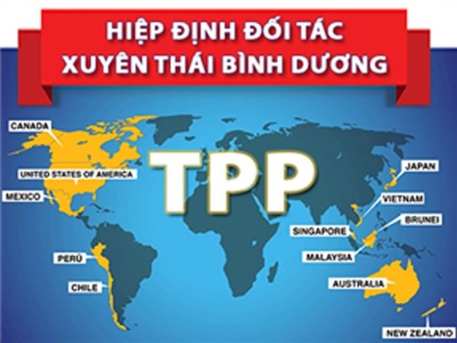 Việt Nam dũng cảm khi tham gia TPP? - 1