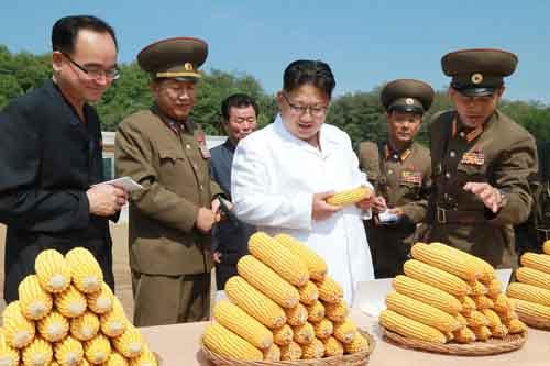Kim Jong-un khác cha, giống ông nội thế nào - 5