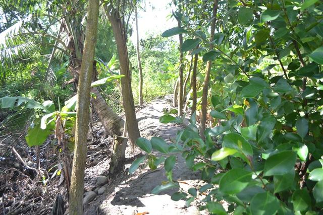 Nơi ẩn náu và trốn chạy của nghi can thảm án Quảng Ninh - 3