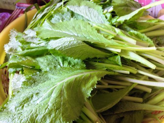 Thanh đạm cùng cá thác lác cuộn cải bẹ xanh - 2