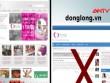 Giả mạo website quỹ từ thiện Tình thương để lừa đảo