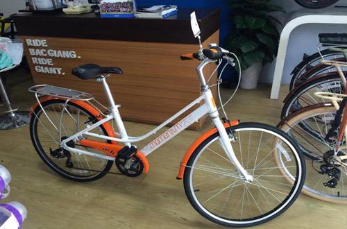 Momentum 2016 iNeed 1500, mẫu xe đạp với thiết kế cổ điển - 1