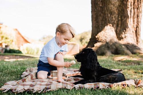 Phát cuồng vì hoàng tử bé sành điệu nhất thế giới - 8