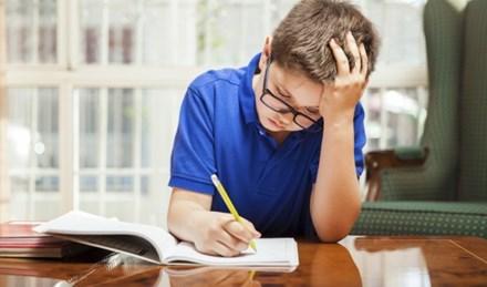 Anh: Hiệu trưởng tuyên bố miễn bài tập về nhà cho học sinh - 1