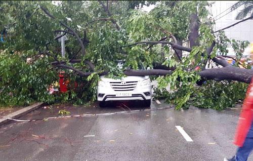 Sóng đánh ào ạt trên đường phố Sài Gòn sau mưa - 11