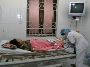 Báo động ký sinh trùng gây sốt rét kháng thuốc