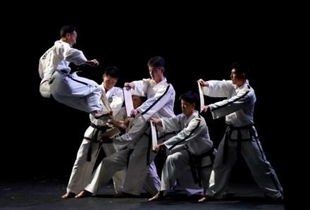 Mục kích võ sư Triều Tiên biểu diễn tuyệt kỹ tại Hàn Quốc - 4