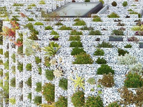 """Không phải núi, ở thành phố cũng có """"vườn bậc thang"""" trên mái - 1"""