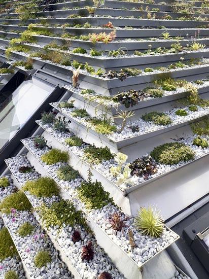 """Không phải núi, ở thành phố cũng có """"vườn bậc thang"""" trên mái - 3"""