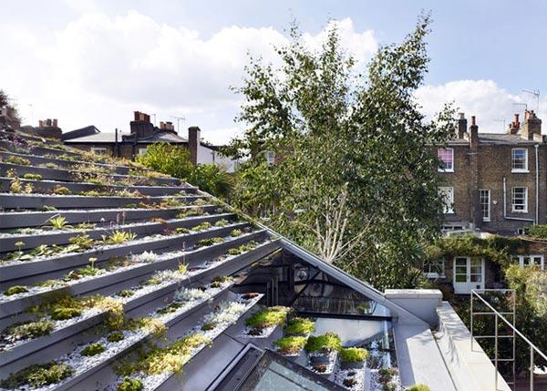 """Không phải núi, ở thành phố cũng có """"vườn bậc thang"""" trên mái - 8"""