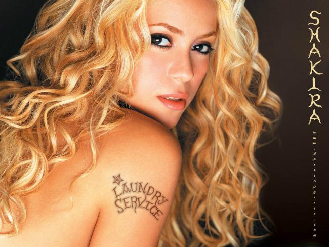 Cặp đôi quen nhau từ năm 2010, khi Pique làm khách mời cho video ca khúc  Waka Waka  của Shakira ở World Cup 2010. Dù có cách biệt khá lớn về tuổi tác (nàng hơn chàng 10 tuổi), nhưng họ vẫn chung sống ngọt ngào bên nhau suốt 7 năm qua