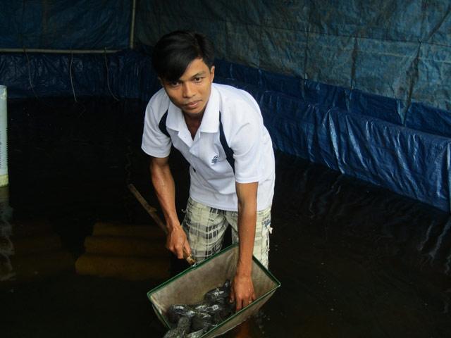 Cầm bằng kỹ sư về quê kiếm nửa tỷ đồng/năm nhờ nuôi cá kiểng - 2