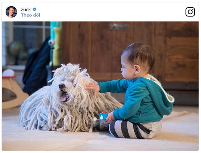 Những chú chó quyền lực nhất giới công nghệ - 1