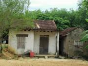 An ninh Xã hội - Chém chết cô giáo mầm non, về nhà tắm rửa rồi đi đầu thú
