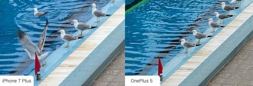 So sánh ảnh chụp từ camera kép của OnePlus 5 và iPhone 7 Plus - 2