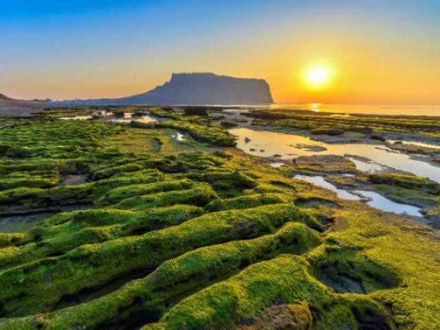 Việt Nam lọt top 20 quốc gia tăng trưởng du lịch nhanh nhất thế giới