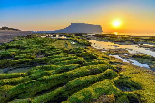Việt Nam lọt top 20 quốc gia tăng trưởng du lịch nhanh nhất thế giới - 3
