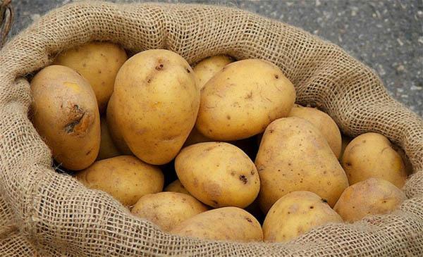 Tại sao dễ chọn nhầm khoai tây độc trong siêu thị? - 4