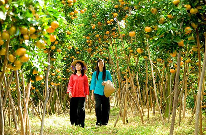 Hè rồi, làm ngay một chuyến về miền Tây thăm vườn cây trái trĩu quả thôi! - 1