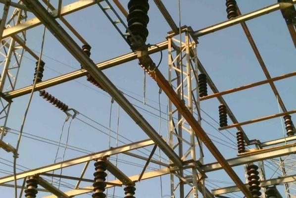 Con rắn khiến gần 4.800 nhà mất điện - 1