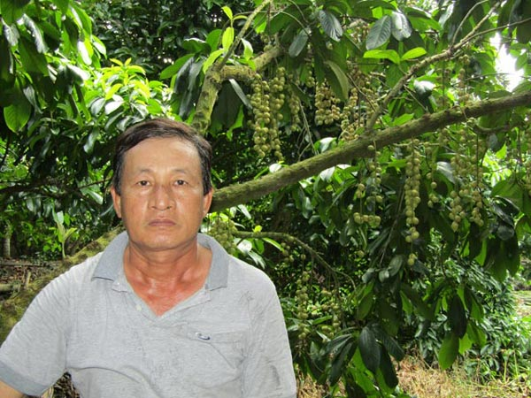 Thu tiền tỷ nhờ trồng cây trái kết hợp du lịch sinh thái - 1