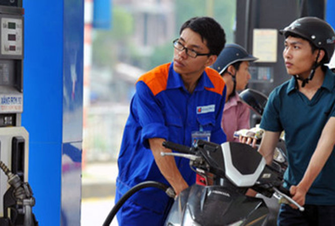 Petrolimex trả cổ tức khủng, Bộ Công Thương thu hơn 3.160 tỷ đồng - 1