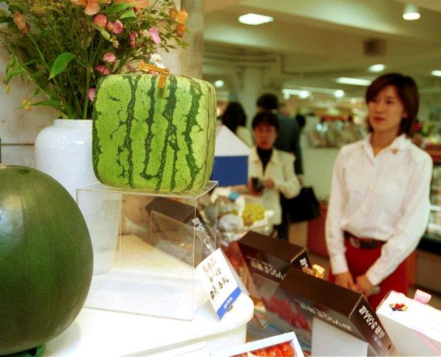 Trái cây độc lạ giá hàng chục nghìn USD hút khách - 1