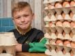 Cậu nhóc 8 tuổi mở doanh nghiệp bán trứng mong thành triệu phú