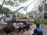 Tin tức trong ngày - Cây xanh lại bật gốc gần phố đi bộ Nguyễn Huệ, nhiều người tháo chạy