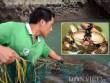 Tận mắt thấy cao thủ săn con cù kỳ nức tiếng ở vịnh Bái Tử Long