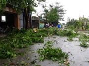 Vì sao bão số 2 không lớn nhưng gây hậu quả nặng nề?