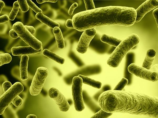 Những lợi ích sức khỏe không ngờ của bắp ngô - 7
