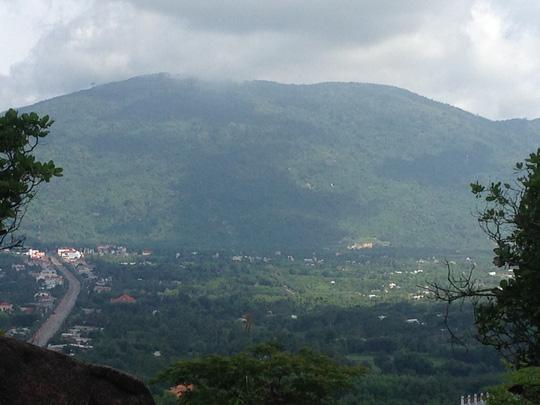 Phát hiện quần thể voọc quý hiếm trên núi Chứa Chan - 5