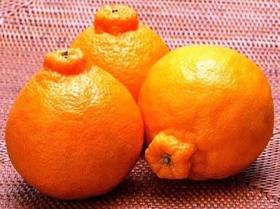 10 loại trái cây đắt nhất thế giới khiến bạn không thể thốt nên lời - 8