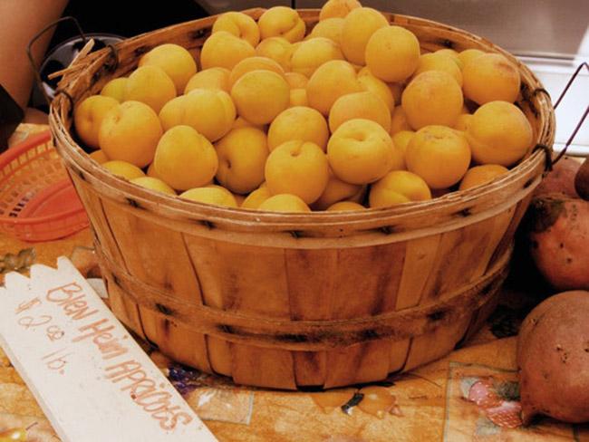 Mơ: Nên chọn những quả có mùi thơm và sờ vào mềm nhưng không nhũn.