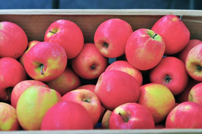 Táo: Nên chọn những quả màu đậm, cứng, vỏ sáng bóng và nặng so với kích thước của quả.