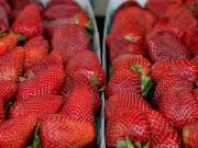 Ẩm thực - Tuyệt chiêu lựa trái cây trăm quả đều ngon như một